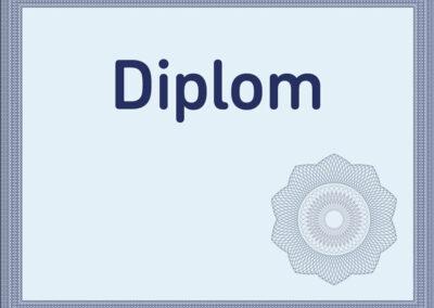 Anerkennung von Diplomen und Berufserfahrungen